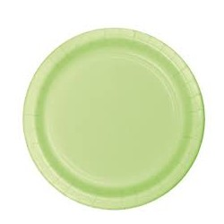 Pistacchio Paper Dinner Plates 24pc