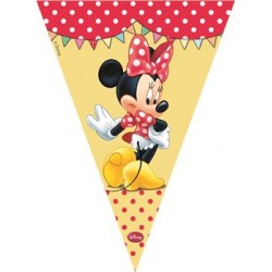 Minnie's Café Flag Banner