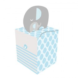 Little Peanut Boy Favor Boxes