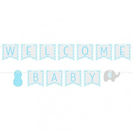 Little Peanut Boy Ribbon Banner