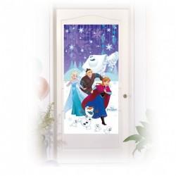 Frozen Snowflakes Door Poster