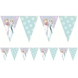 Frozen Sparkle Flags Banner