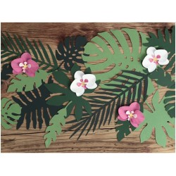 Mix Tropical leaves 21 pc