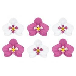 Paper Orchids 6 pc