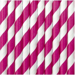 Hot Pink Striped Paper Straws 10pc