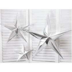 Silver Paper Star