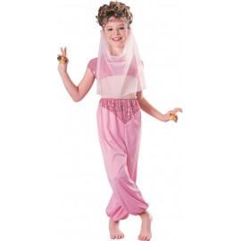 Odalisque Costume 8-10 years