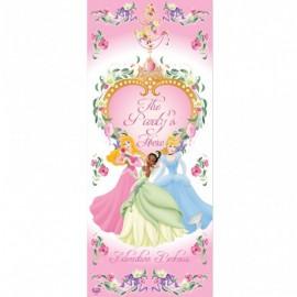 Disney Princess Door Decoration